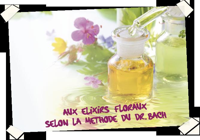 Aux elixirs floraux selon la méthode du Dr. Bach