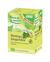 Moringa-gingembre